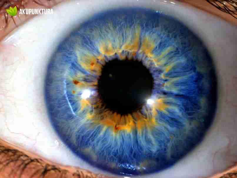 irydologia oka