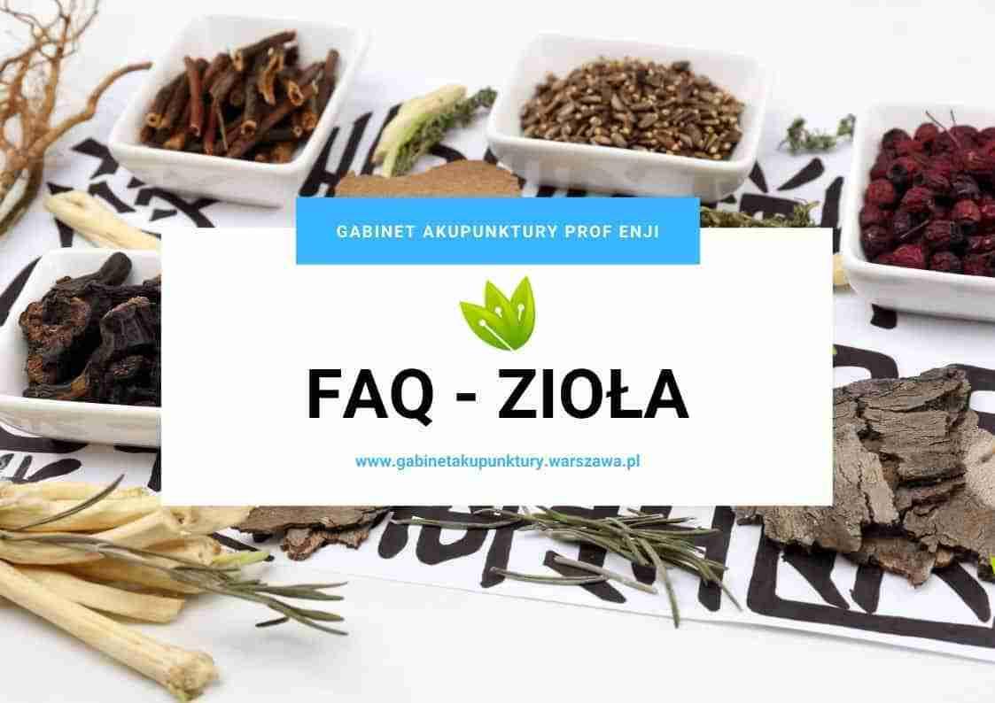 faq ziołolecznictwo co warto wiedzieć
